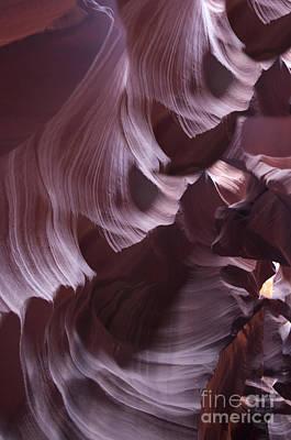 Purple Folds Print by Brenda Kean