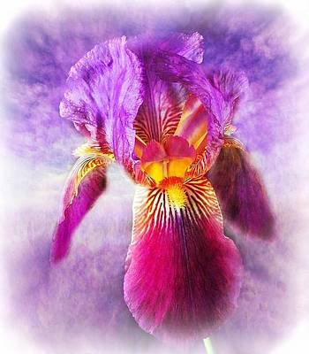 Iris Digital Art - Purple Iris And The Sky - Soft Colors by Lilia D