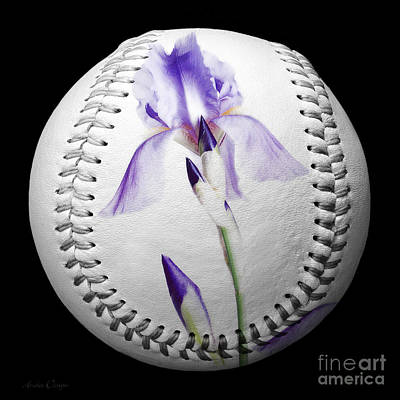 Baseball Photograph - Purple Iris High Key Baseball Square by Andee Design