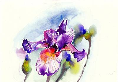 Purple Iris With Buds Watercolor Print by Tiberiu Soos