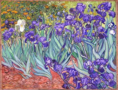 Print Of Irises Painting - Purple Irises by Vincent Van Gogh