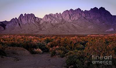 Las Cruces Digital Art - Purple Mountain Majesties by Barbara Chichester