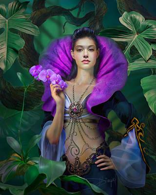 Purple Orchids Photograph - Purple Orchid by Drazenka Kimpel