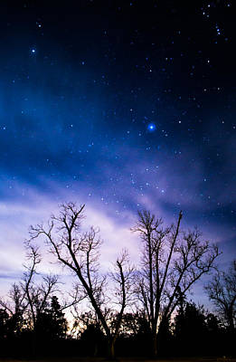 Van Goh Photograph - Purple Stars by Shelby  Young