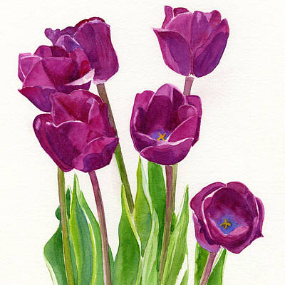 Purple Tulips Square Design Print by Sharon Freeman