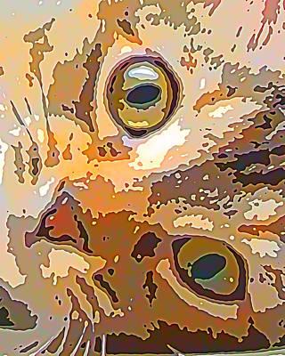 Kitty Digital Art - Purrty Please by David G Paul