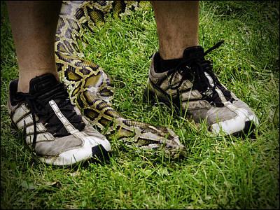 Snake Photograph - Python Snake In The Grass And Running Shoes by LeeAnn McLaneGoetz McLaneGoetzStudioLLCcom