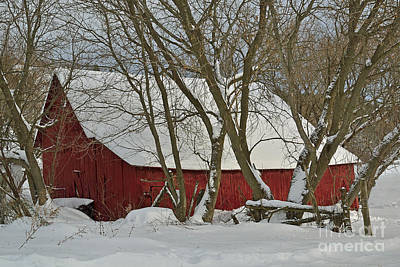 Red Barn In Winter Photograph - Quebec Winter by Joshua McCullough
