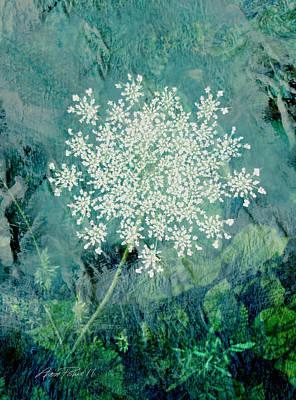 Queen Anne's Lace  Print by Ann Powell