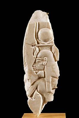 Reliefs Photograph - Queen Nefertiti Carving by Petrie Museum Of Egyptian Archaeology, Ucl