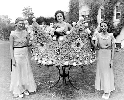 White-crowned Photograph - Queen Of The Flower Show by Underwood Archives