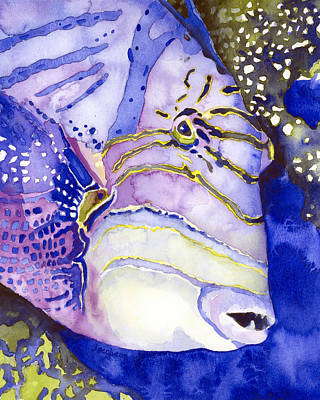 Triggerfish Painting - Queen Triggerfish Portrait by Pauline Jacobson
