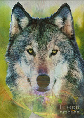 Wild Wolf Mixed Media - Quiet Majesty by John Robert Beck