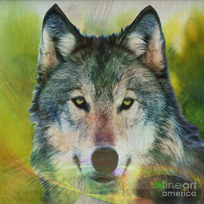 Wild Wolf Mixed Media - Quiet Majesty - Square Version by John Robert Beck