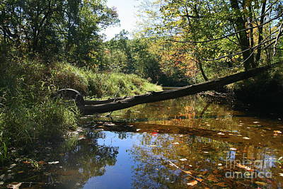River Photograph - Quinnebaug Reflections  by Neal  Eslinger