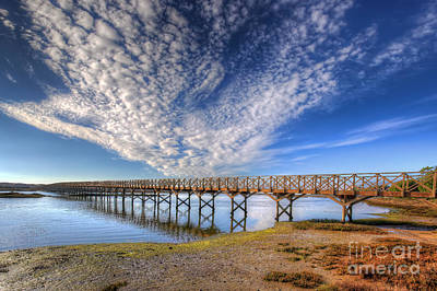 Nigel Hamer Photograph - Quinta Do Lago Wooden Bridge by English Landscapes