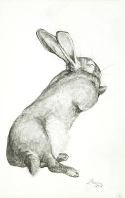 Rabbit Sleeping Print by Jeanne Maze