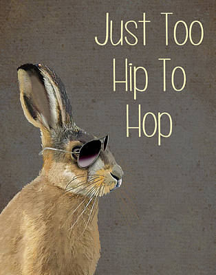 Rabbit Too Hip To Hop Grey Print by Kelly McLaughlan