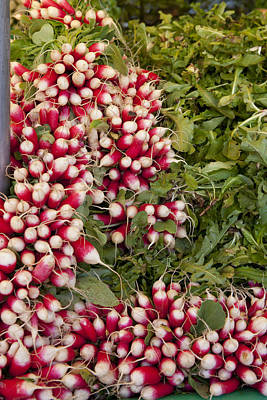 Photograph - Radishes by Art Ferrier
