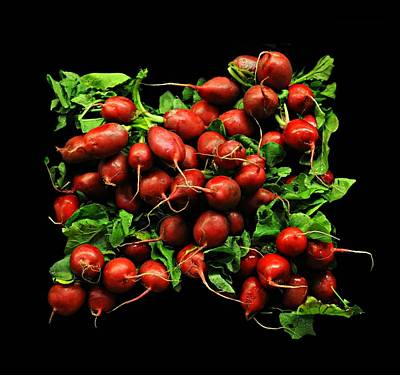 Radishes  Print by Diana Angstadt
