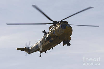 Raf Photograph - Raf Sea King by J Biggadike
