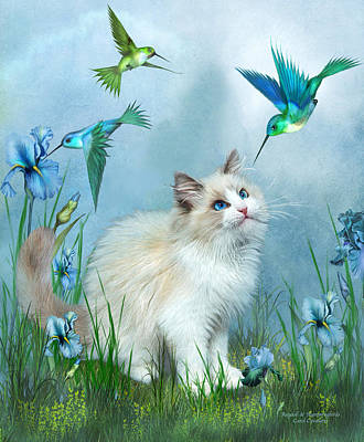 Hummingbird Mixed Media - Ragdoll Kitty And Hummingbirds by Carol Cavalaris
