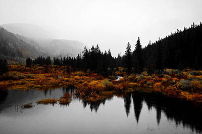 Photograph - Rain For Reflection by Jeremy Rhoades