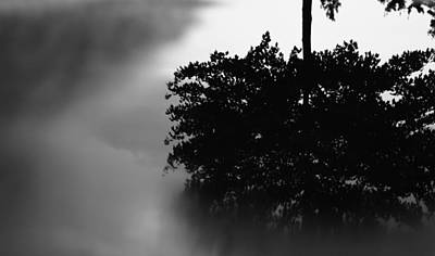 After The Storm Photograph - Rain Puddle Reflection Black And White by Dan Sproul