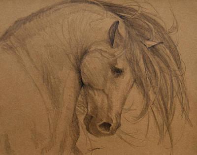 Wild Horses Drawing - Rain Shadow by Jani Freimann