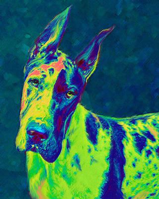 Great Dane Digital Art - Rainbow Dane by Jane Schnetlage