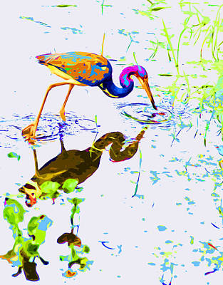 Lettuce Digital Art - Rainbow Heron by Norman Johnson