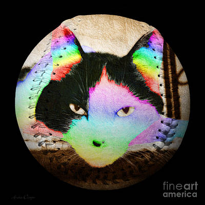 Feline Photograph - Rainbow Kitty Baseball Square by Andee Design