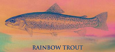 Trout Mixed Media - Rainbow Trout by Dan Sproul