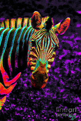 Zebra Digital Art - Rainbow Zebra 2 by Nick Gustafson