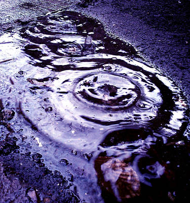 Raindrop Print by Lucy D