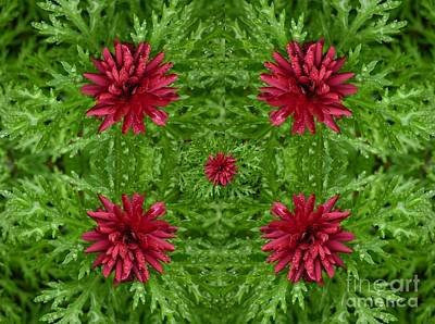 Rainy Flowers Kaleidoscope Print by Carol Groenen