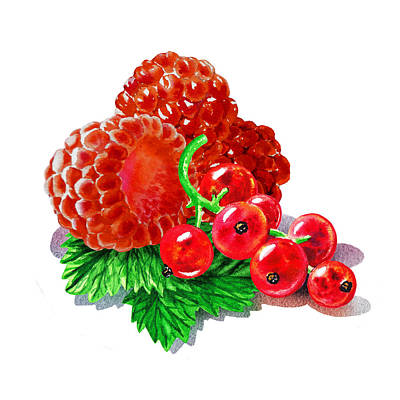Raspberry Painting - Raspberries And Redcurrant by Irina Sztukowski