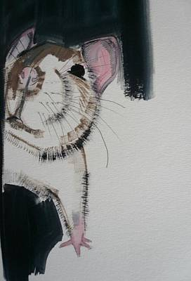 Rodent Photograph - Rat, 2010 Oil On Paper by Sally Muir