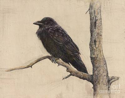 Drawing - Raven by Lori  McNee