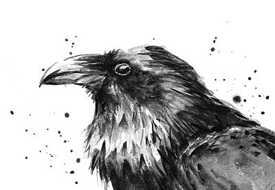 Black And White Bird Painting - Raven Watercolor Portrait by Olga Shvartsur
