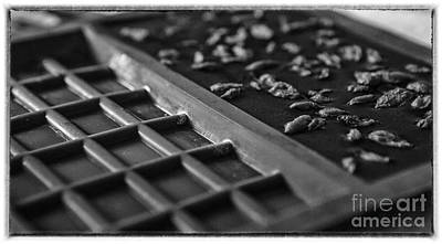 With Red. Photograph - Raw Chocolate Setting In Black And White by Iris Richardson