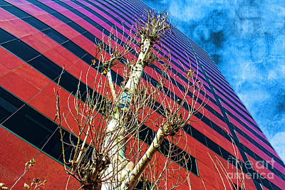 Reach For The Sky Print by Mariola Bitner