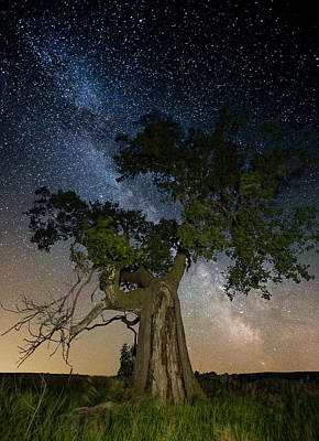 Reach For The Stars Print by Aaron J Groen