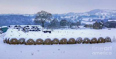 Ready For Winter Print by David Birchall