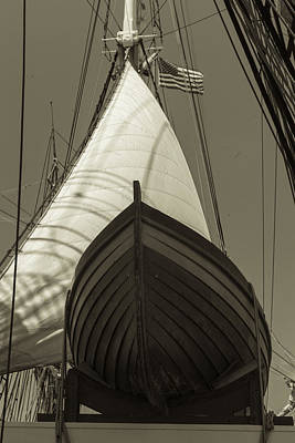 Ready To Save Black And White Sepia Print by Scott Campbell