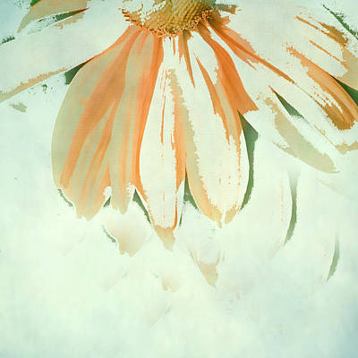 Abstracted Coneflowers Photograph - Reconstructed Flower No.1 by Bonnie Bruno