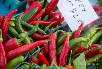 Red And Green Peppers For Sale Print by Rebecca Cozart