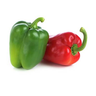 Red And Green Peppers Print by Science Photo Library