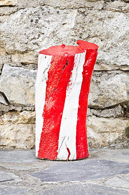 Red And White Log Print by Tom Gowanlock