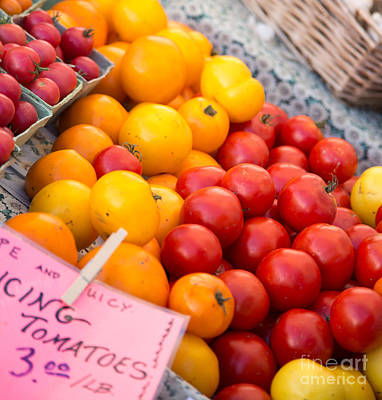 Red And Yellow Tomatoes Closeup Print by Rebecca Cozart